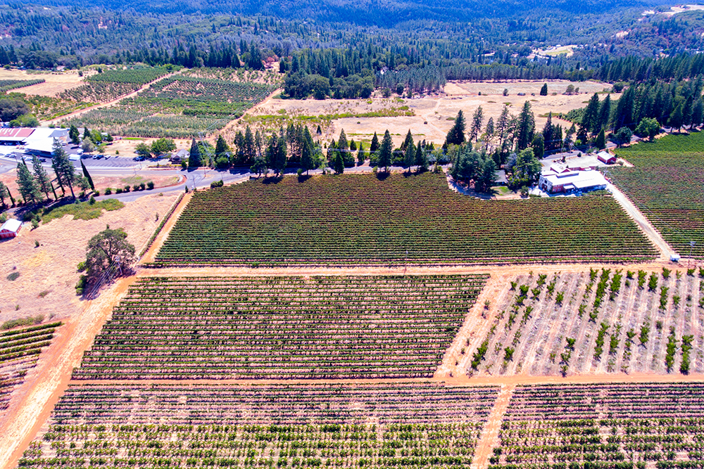 placerville aerial video